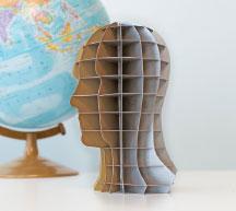 3D Head Autodesk 123D