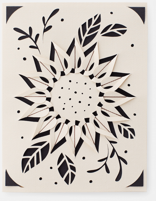 A black and white card with an a plant-looking shape cut out of it.