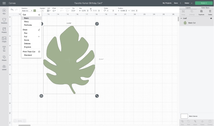 Screenshot showing a palm leaf in the Design Space canvas