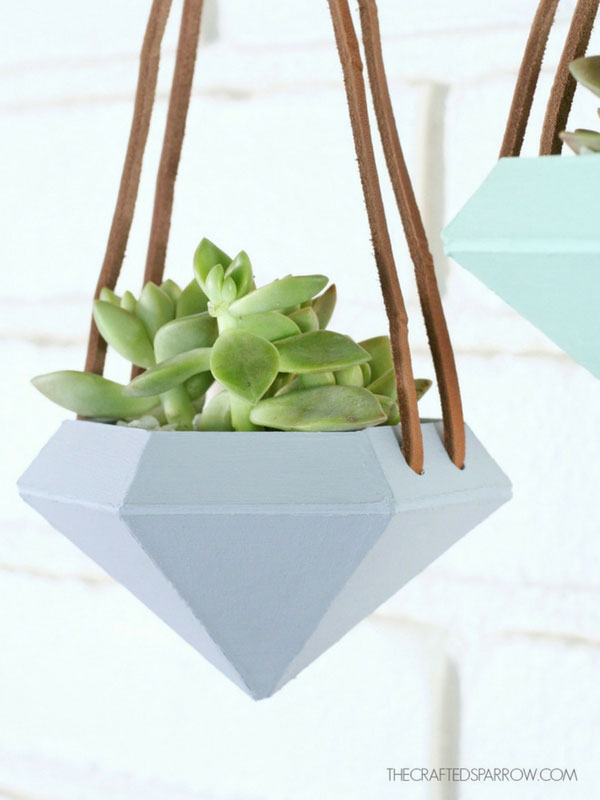 Make your own succulent planter
