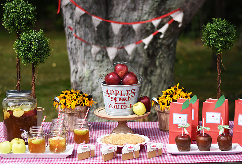 Fall makes me think of apples, so celebrate with an apple party