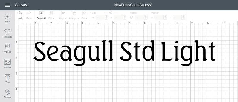 Seagull Std Light Font