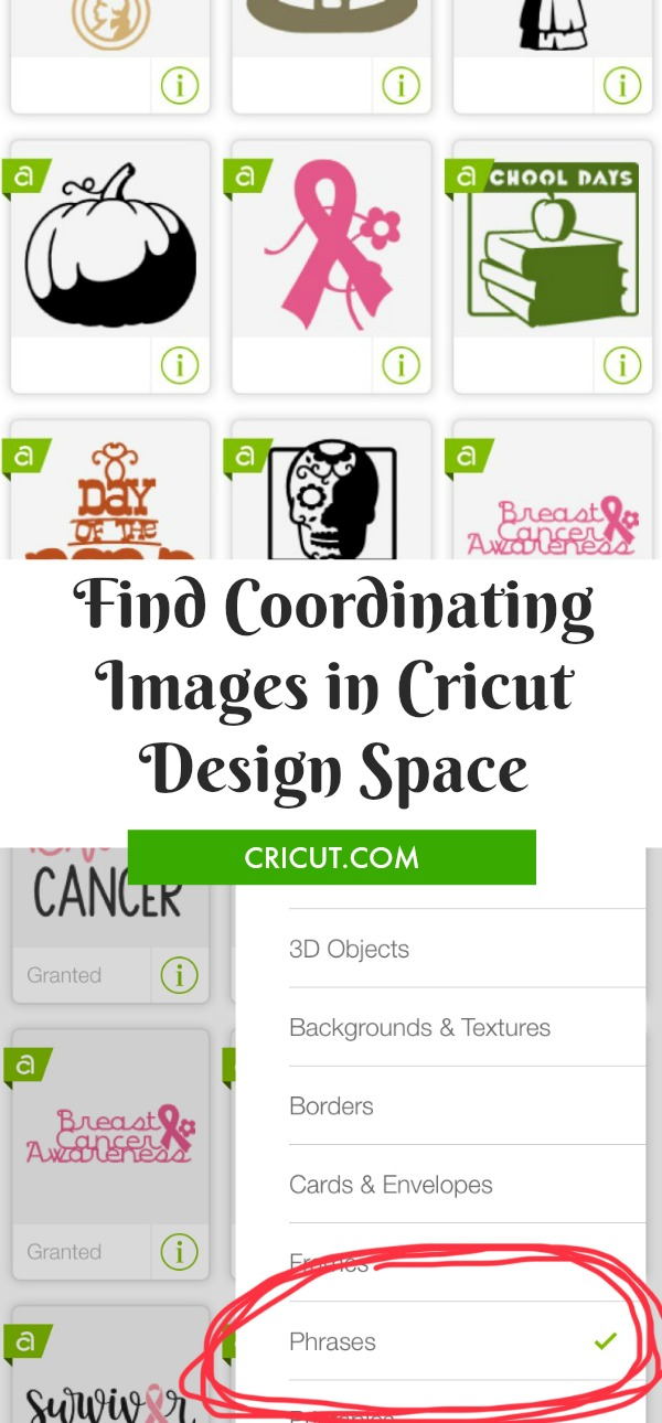 Finding Coordinating Images in Design Space