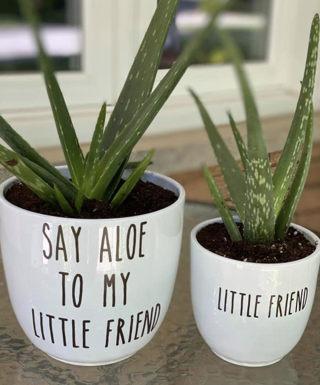 Pots with vinyl phrases