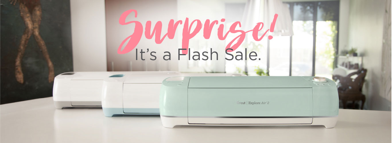 Surprise! It's a Flash Sale.